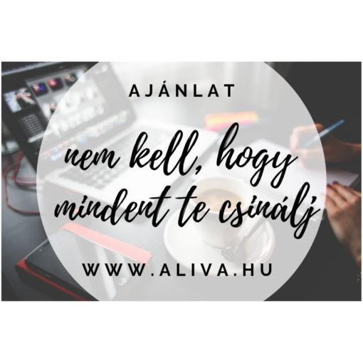 Aliva - Virtuális Asszisztens